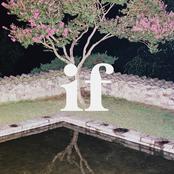 if. - Single