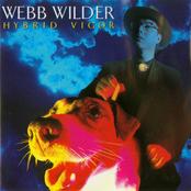 Webb Wilder: Hybrid Vigor