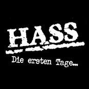 Ihr Helden by Hass