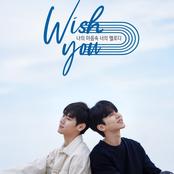 Wish You (Original Television Soundtrack)
