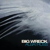Albatross - Single