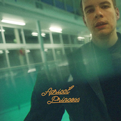 Rex Orange County: Apricot Princess