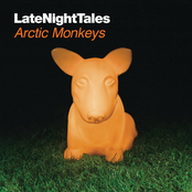 Late Night Tales: Arctic Monkeys