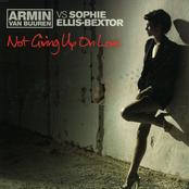 Armin van Buuren - Not Giving Up On Love