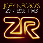 Joey Negro's 2014 Essentials