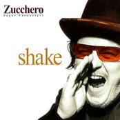 Zucchero: Shake