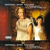 Dan Zanes: Natural Born Killers