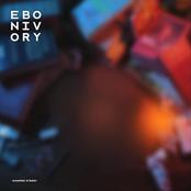 Ebonivory: Hanmer Street
