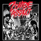 Zombie Assault: Video Nasty