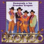 Bronco: Homenaje a Los Grandes Grupos
