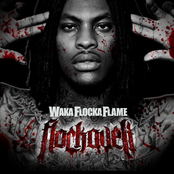 Waka Flocka Flame: Flockaveli