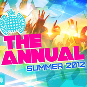 Ministry of Sound - The Annual Summer 2012