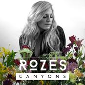Canyons - Single