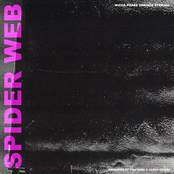 Wicca Phase Springs Eternal: Spider Web