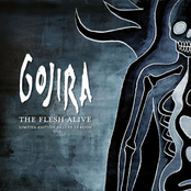 A Sight To Behold by Gojira