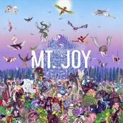 Mt. Joy: Rearrange Us