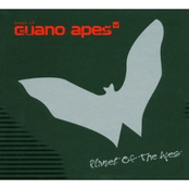 Best Of Guano Apes