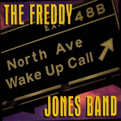 Freddy Jones Band: North Avenue Wake Up Call