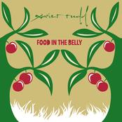 Xavier Rudd: Food In The Belly