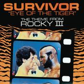 Eye Of The Tiger (Digital 45)