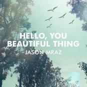 Hello, You Beautiful Thing