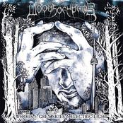Woods 5: Grey Skies  Electric Light