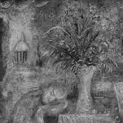 MeWithoutYou: A To B Life
