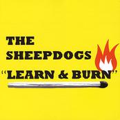 Learn  Burn