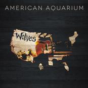 American Aquarium: Wolves