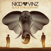 Black Star Elephant cover art