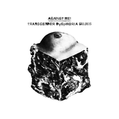 Against Me!: Transgender Dysphoria Blues