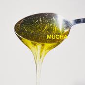 Mucha (feat. Jan-Rapowanie)