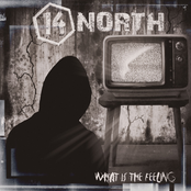 14 North: What is the Feeling