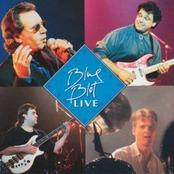 Blue Blot Live