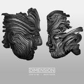 Dimension: Love To Me / Move Faster