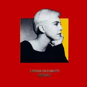 Adriana Calcanhotto: Senhas