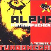 Alpha Motherfuckers