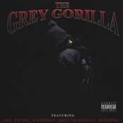The Grey Gorilla
