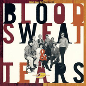 Blood, Sweat and Tears: The Best Of Blood, Sweat & Tears: What Goes Up!