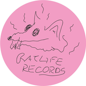 Rat Life 1