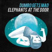 Dumbo Gets Mad: Elephants at the door