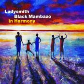 Ladysmith Black Mambazo: In Harmony