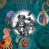 Ekko: Centripetal