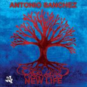 Antonio Sanchez: New Life