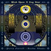 Wish Upon A Dog Star