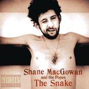 Shane MacGowan & The Popes - The Snake Artwork