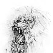 sertac91 için avatar