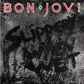 Bon Jovi ~ Slippery When Wet