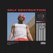 Self Destruction - Single