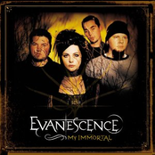 My Immortal (Maxi-Cd)